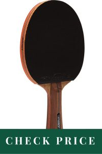 Best Ping Pong Paddles 2020