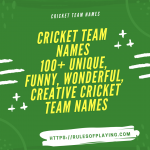 100+Cricket Team Names [ Unique, Cool, Funny, Powerful ]