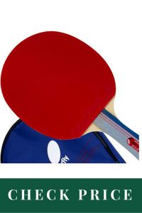 Best Table Tennis Racket For Professionals Butterfly 401