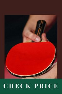 Best Table Tennis Paddle For Professionals Idoraz Table Tennis Paddle