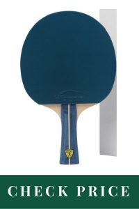 Best Table Tennis Racket For Professionals