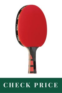 Best Table Tennis Paddle For Professionals STIGA Evolution Performance